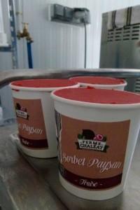 sorbet fraise bio ardehce ferme du chaleat